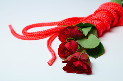 bondage rope & roses - bdsm & swinging