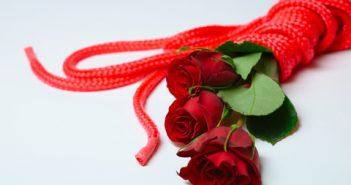 bondage rope tied roses